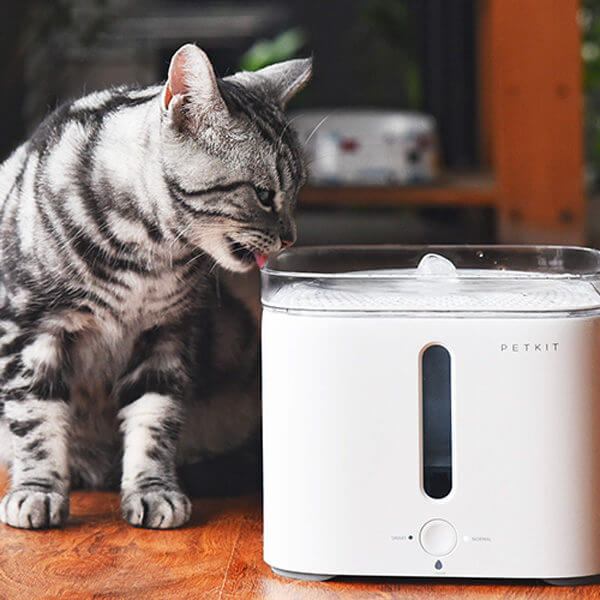 Petkit Eversweet - Cat Drinking Water (Product Info)