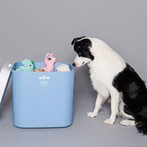 JJOBI Friends Pet UV LED Sterilizer (Made in Korea)