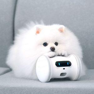 Varram Pet Fitness Robot (VARRAM 寵物健身智能機械人) - VARRAM 保護外殼